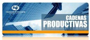 Qué son las Cadenas productivas NAFIN